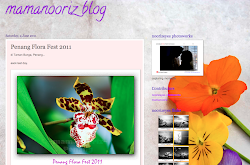 mamanooriz blog