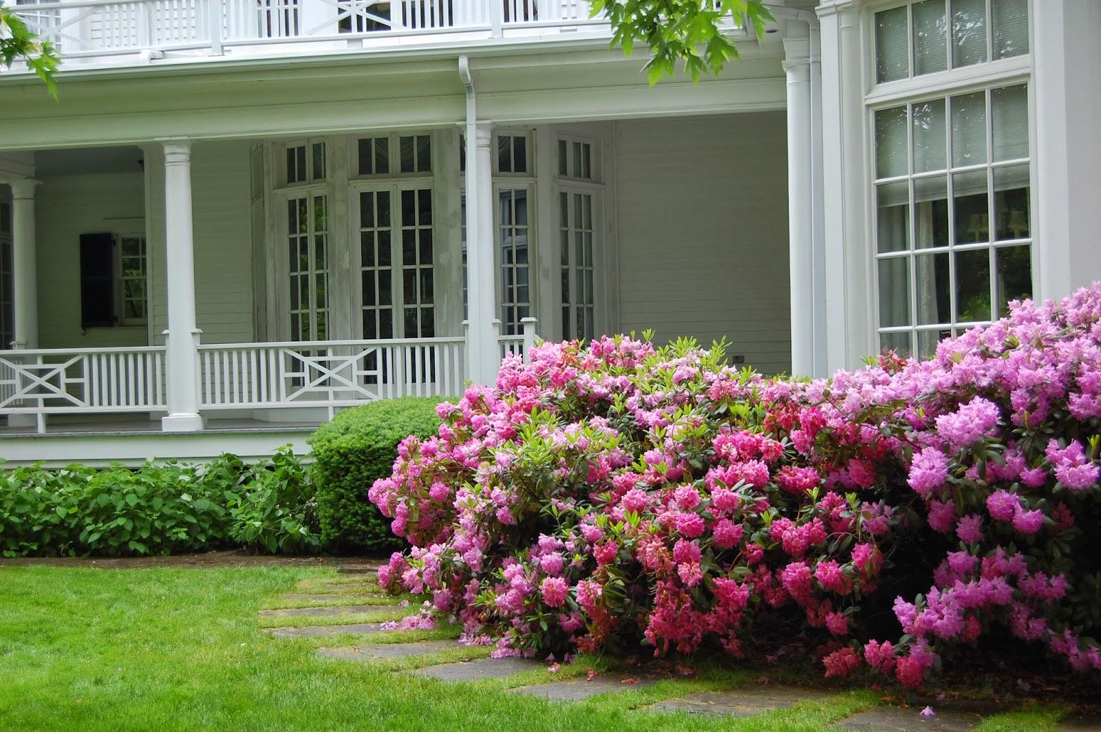Astrid S Garden Design Pink In The Garden