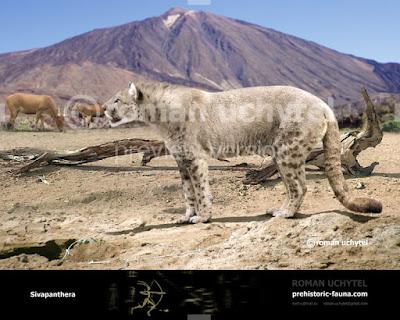 carnivoros prehistóricos Sivapanthera