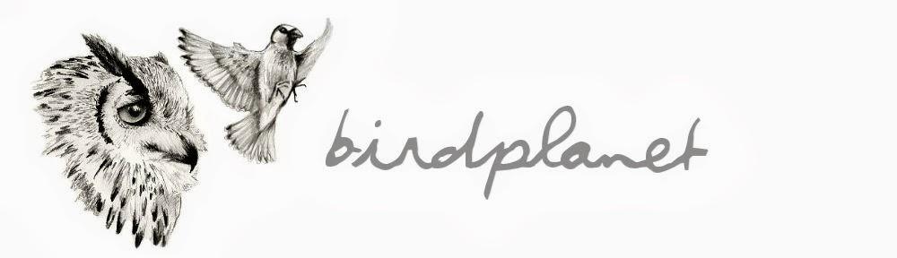 Birdplanet