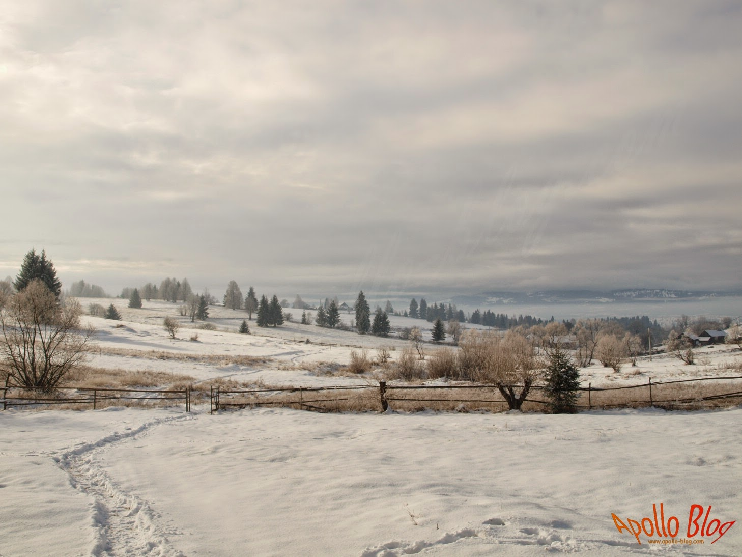 Iarna pe Filpea