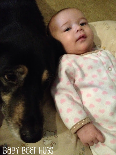 dog with baby girl