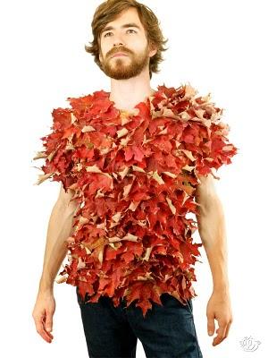 biologische t-shirts