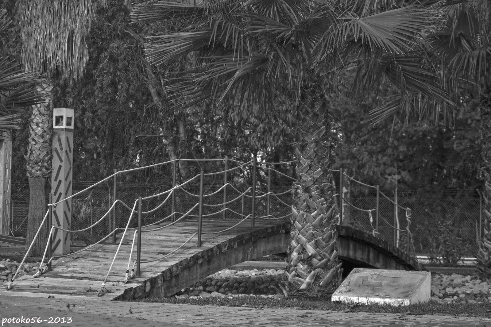 Puente en el Parque Carlos Cano