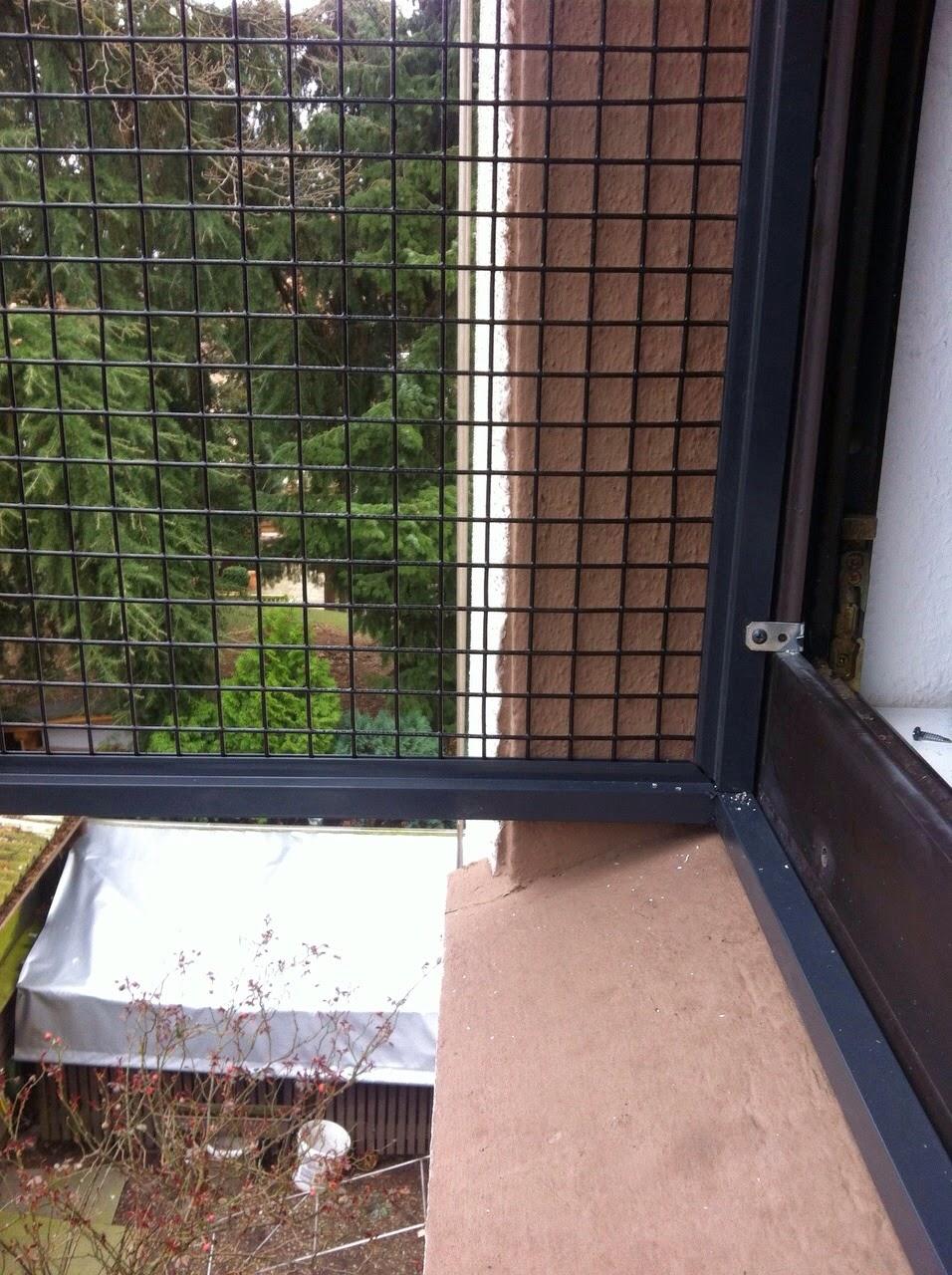 katzennetz nrw die adresse f r ein katzennetz katzenbalkon das fenster freigehege f r katzen. Black Bedroom Furniture Sets. Home Design Ideas