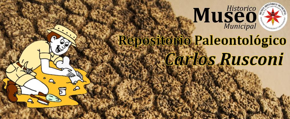 "Repositorio Paleontológico Regional ""Carlos Rusconi"""