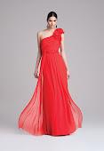 Φορεμα μαξι σιφον coctail