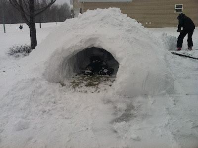Construir un iglú actividades infantiles en la nieve