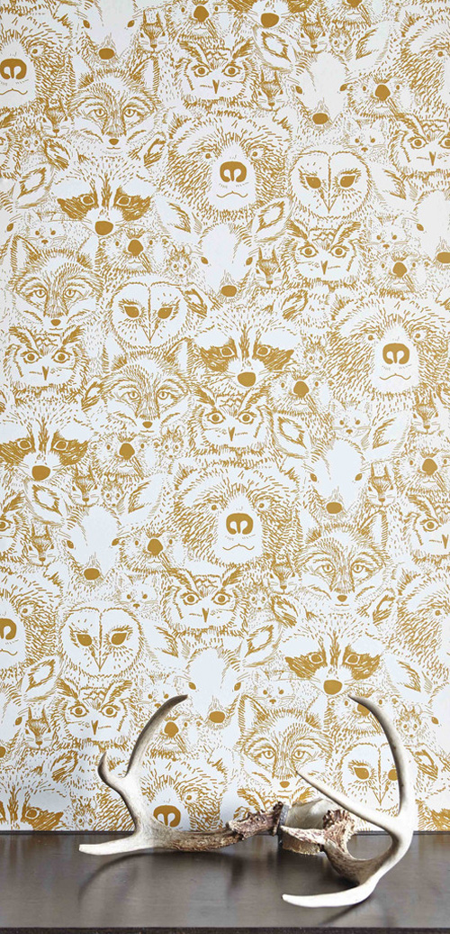 my owl barn wild chasing paper and sarah watson