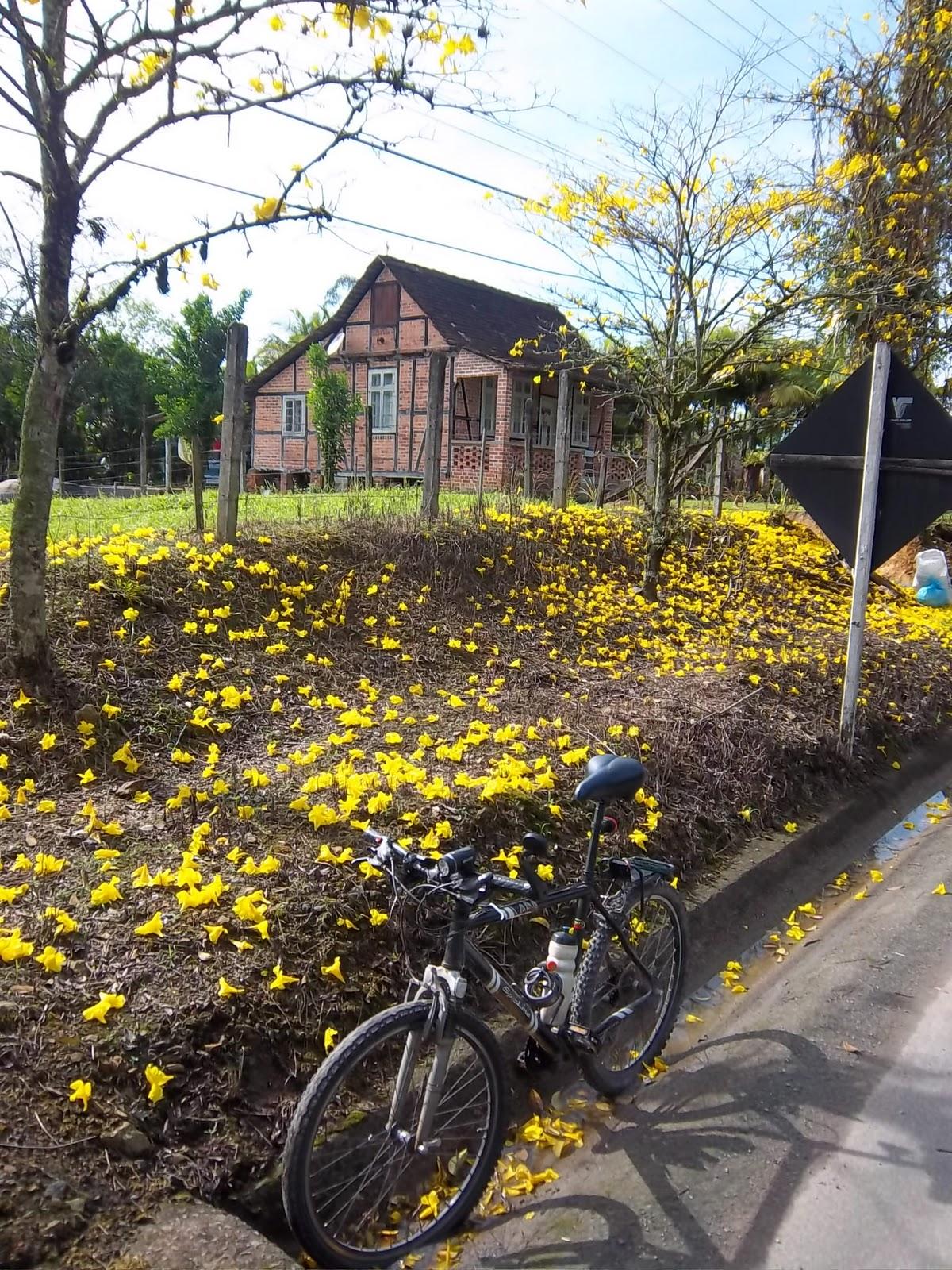 Circuito Vale Europeu : Vilson ciclista campeonato vale europeu de cicloturismo etapa