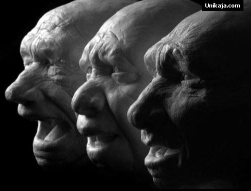 spesies Neanderthal
