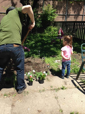 father and daughter planting flowers in the garden
