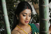 Shriya Saran latest Photos in saree-thumbnail-9