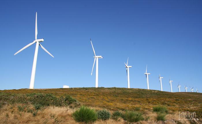 Energias renovables aerogeneradores #eolica #ecofriendly