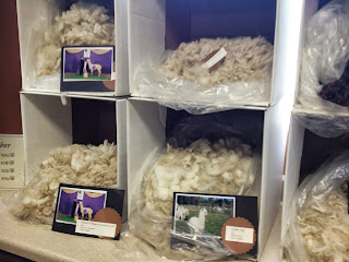 sorted alpaca fleece