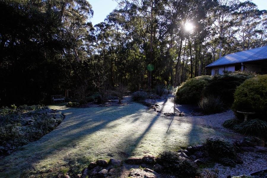 Frost, Greendale