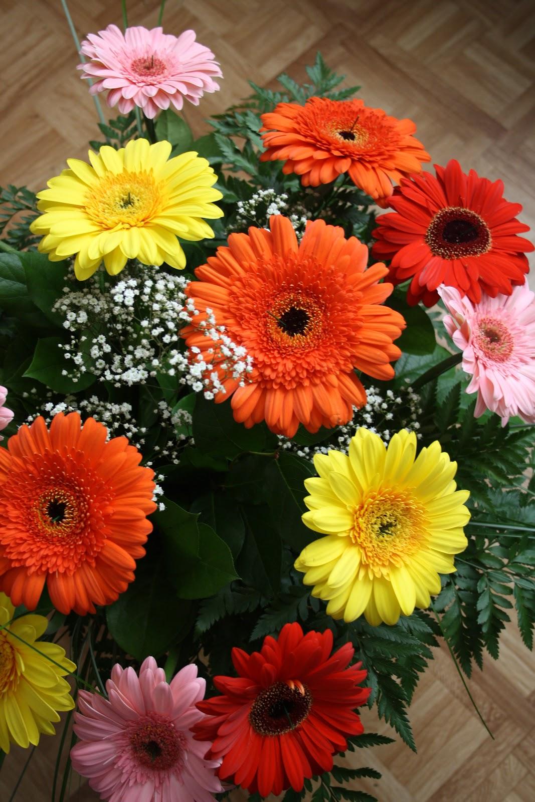 Il mio ripostiglio un mazzo di fiori che ho ricevuto da for Progetta il mio mazzo