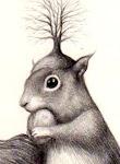 lo scoiattolo fingitore