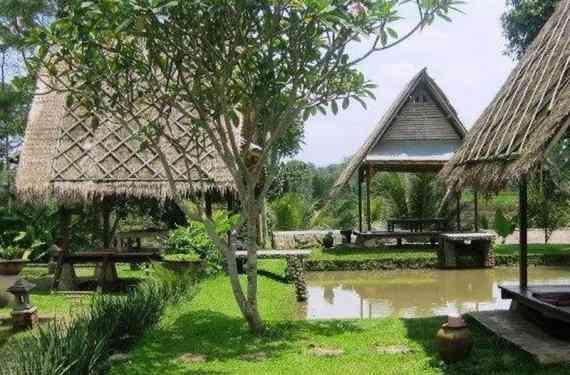 Desa Sawah Restoran dan Villa Caringin Bogor