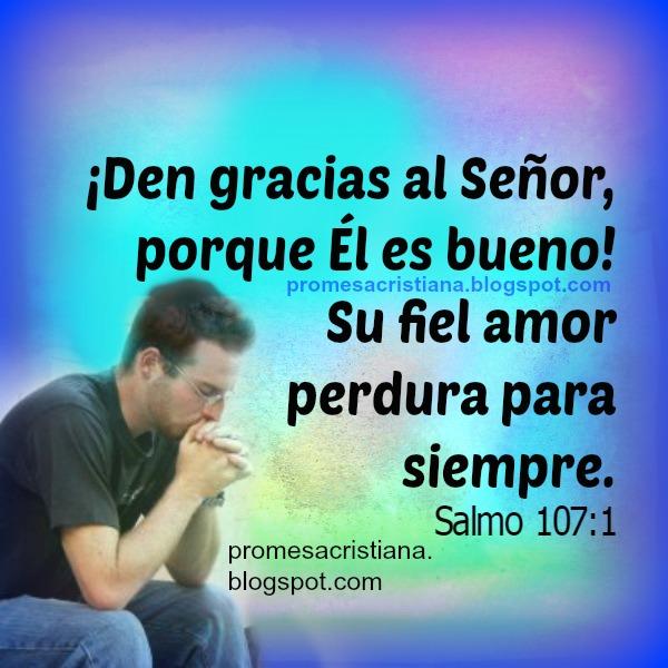 Versículo bíblico, cita de la Biblia, dar gracias a Dios, es bueno y fiel. Promesa Cristiana