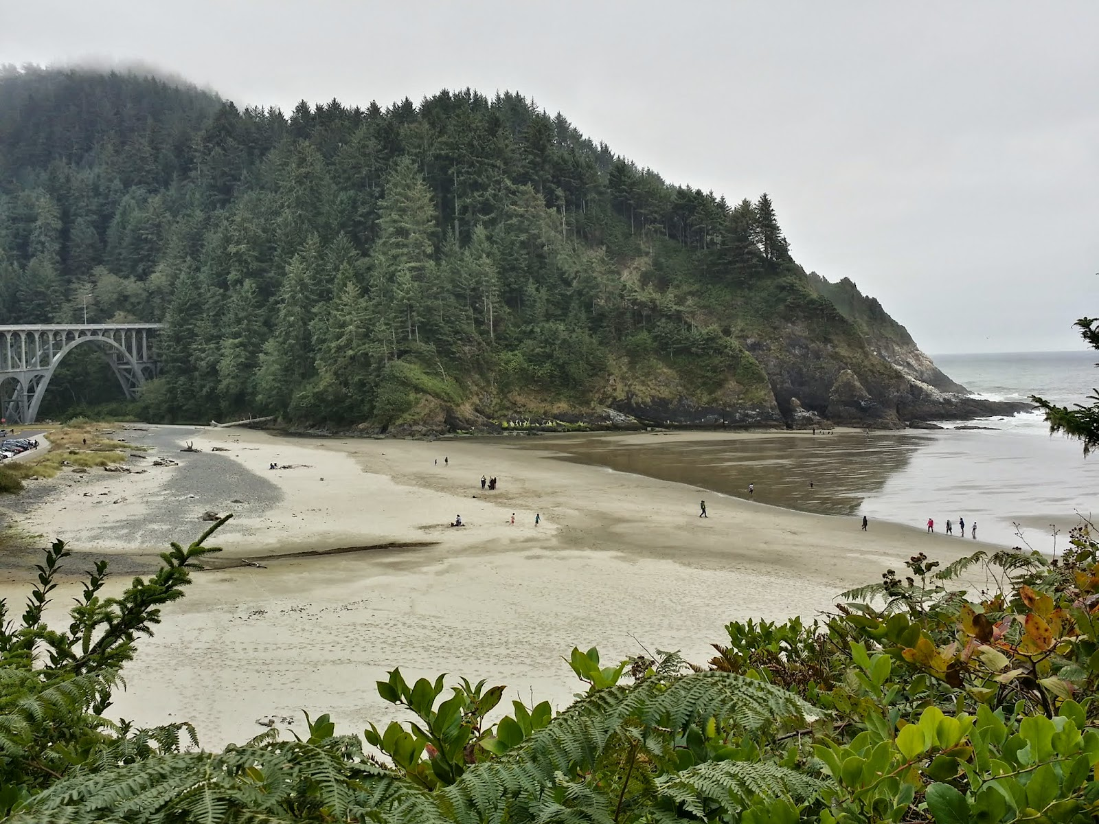 view of the bridge on the hike to Heceta Head Lighthouse