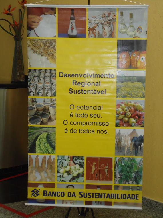 PARCERIA DESENVOLVIMENTO REGIONAL SUSTENTAVEL BANCO DO BRASIL!