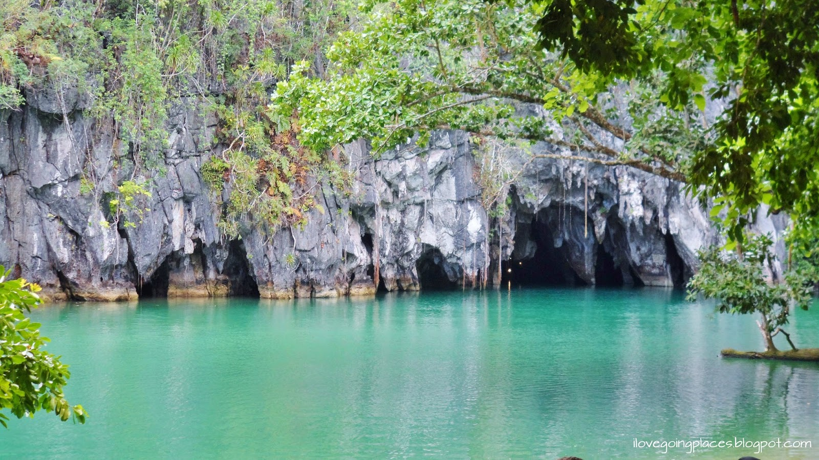 puerto princesa palawan R oads self drive car and van rental in puerto princesa palawan philippines roads to the two main areas of the island palawan - el nido and sabang (underground river) has already been done.