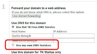 Выбираем использование собственных DNS-серверов на dot.tk