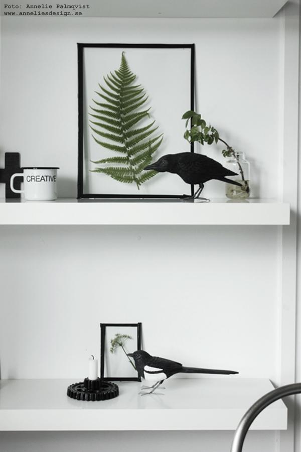 handsnidad fågel, skata, diy tavla med gröna växter, ljusstake, house doctor, ram, glas från ramarna blir en tavla, hylla, hyllan, vitt, vit, vita, svart och vitt, svartvitt, svartvit, inredning, inredningsblogg, blogg,