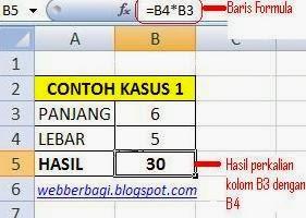 Contoh Tipe Data Microsoft Excel