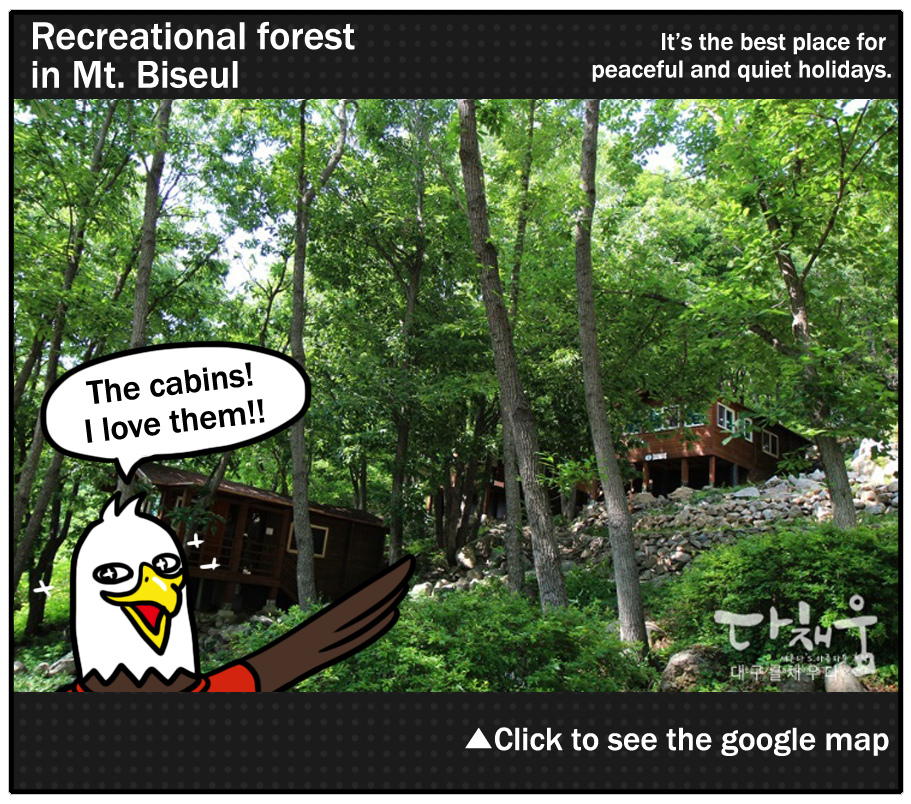 Recreational forest in Mt. Biseul: It's the best place for peaceful and quiet holidays.