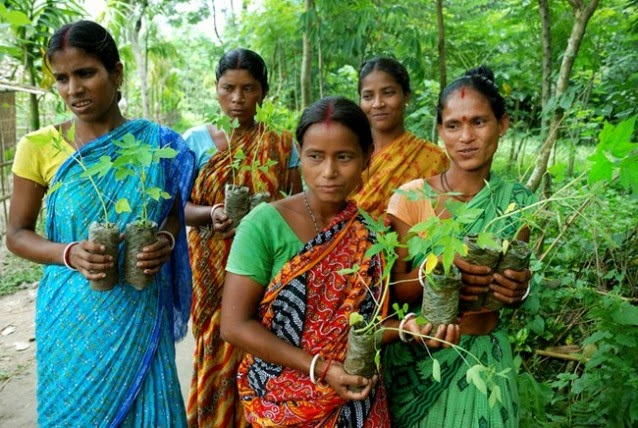 This Indian Village Plants 111 Trees Every Time a Girl Is Born - As a female child is born, the village gathers to plant 111 trees.