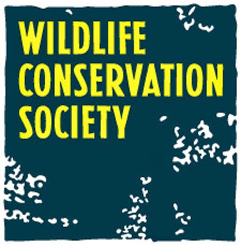 Wildlife Conservation Society (WCS) Vacancy: Bogor Office - Indonesian