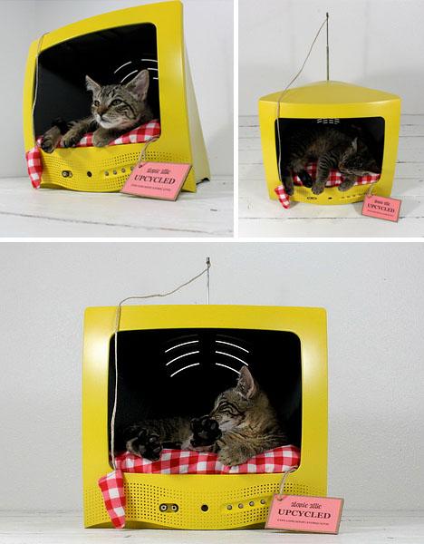Как из коробки сделать кроватку для кошки