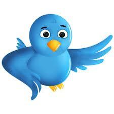 cara memasang burung twitter melayang