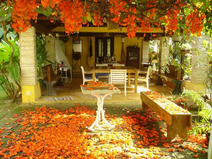 Glamorous Patio Garden Design Ideas