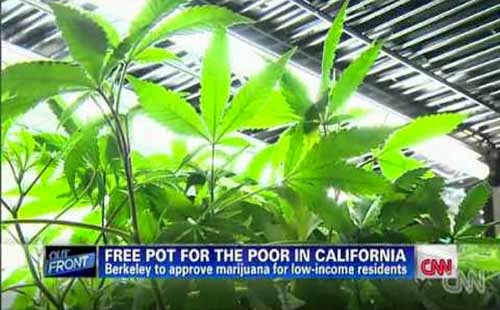 Free Weed For California Low Income Residents