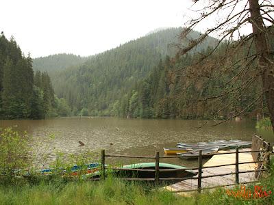 Barci in Lacul Rosu