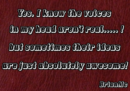 quote, sayings, Yes, I know the voices in my head aren't real..... but sometimes their ideas are just absolutely awesome!