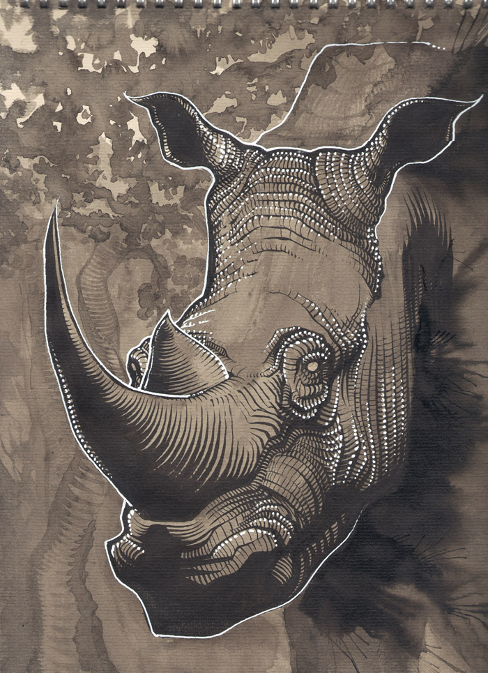 Rhinocéros by Regis Lagoeyte