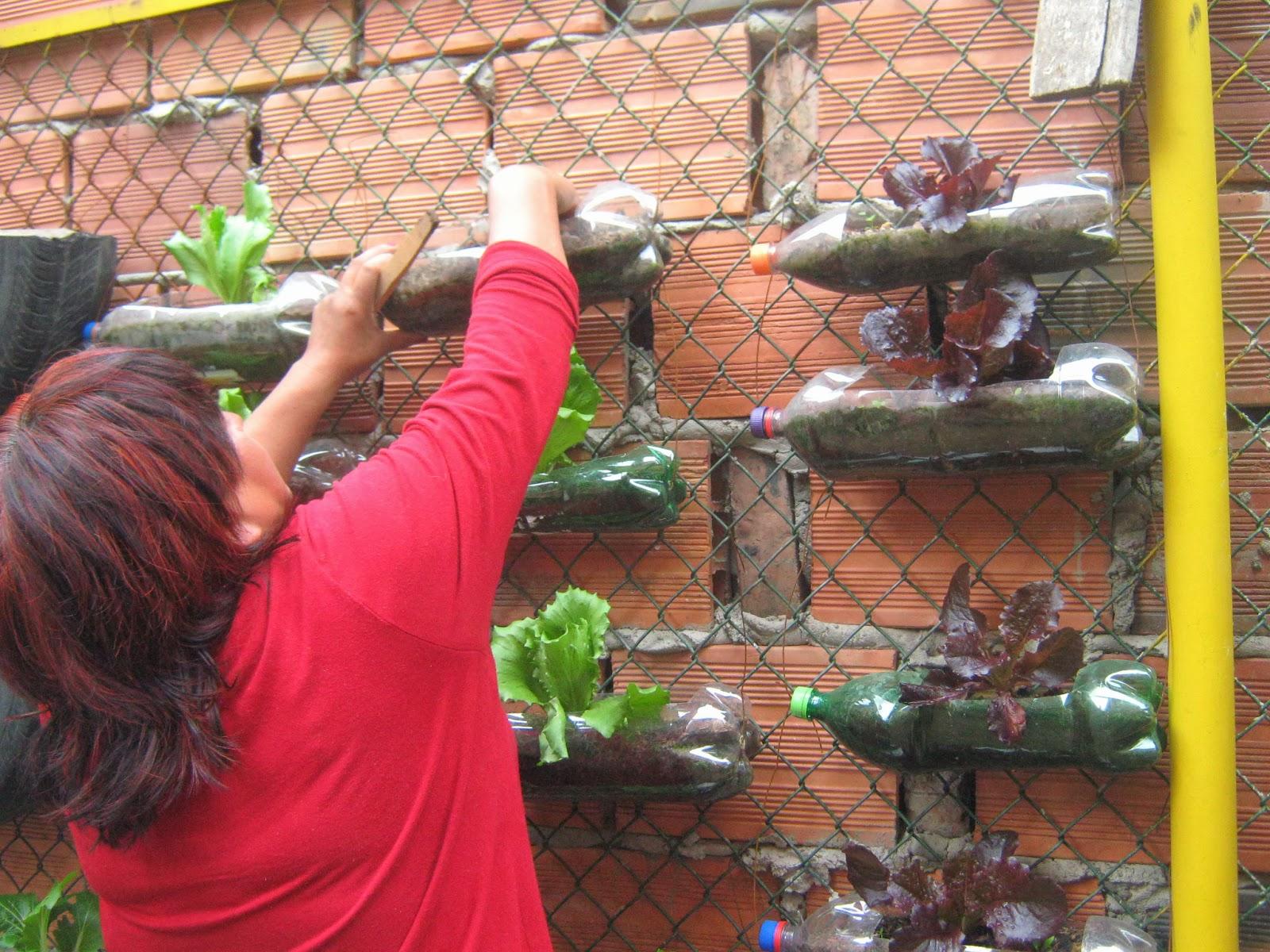 Mdls colombia agricultura urbana con personas mayores apoyada por maestros de la supervivencia - Compartir piso con personas mayores ...