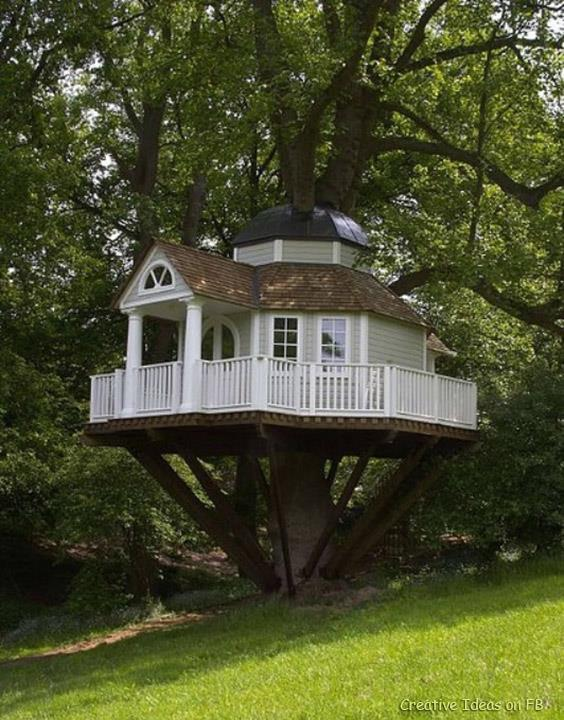 Creative Ideas Awesome Tree House