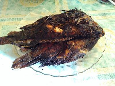 Resep Membuat Ikan Bakar Kecap Sederhana Yang Lezat