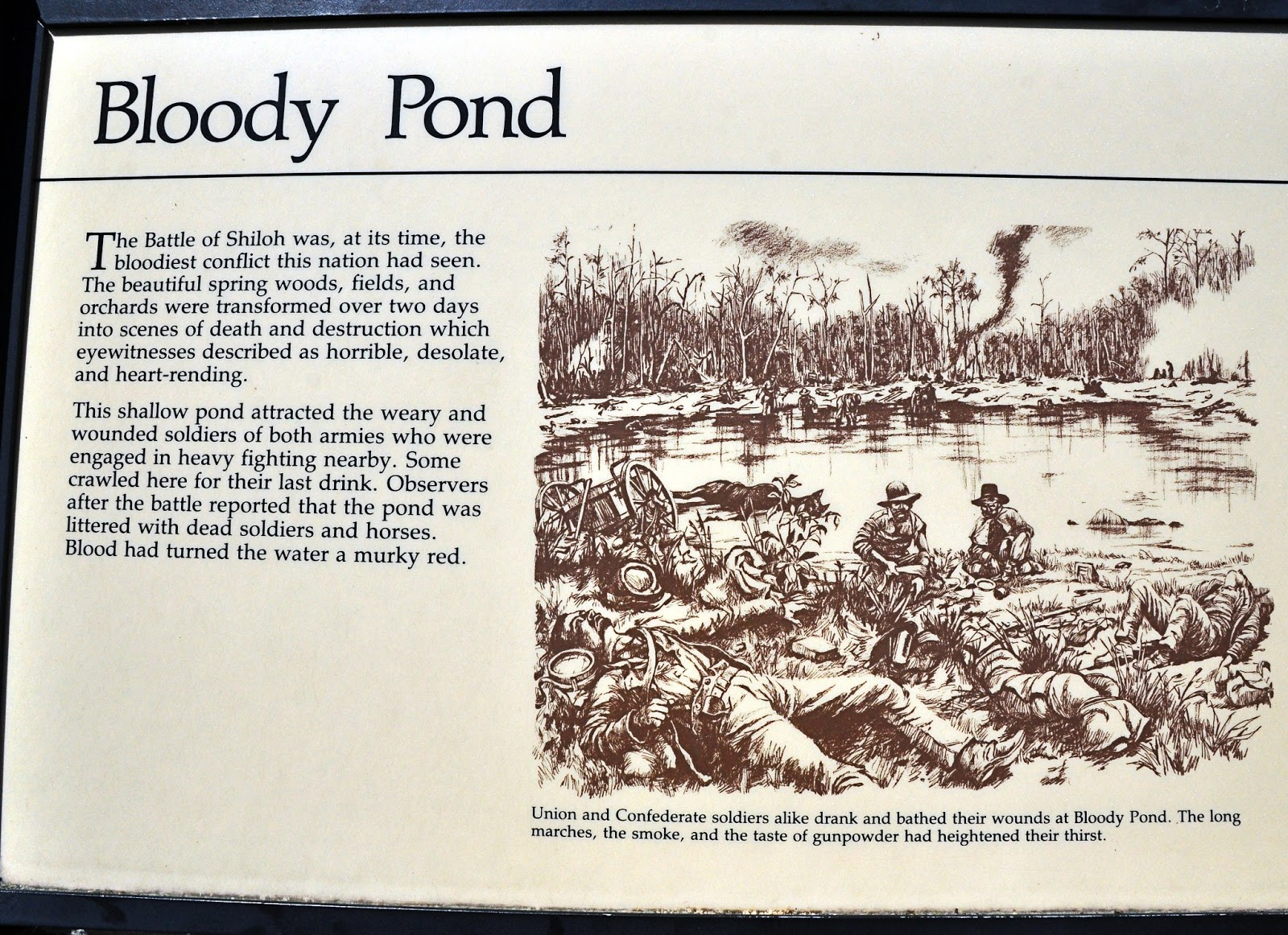 Battle of shiloh bloody pond sinbad and i on the loose the battle at