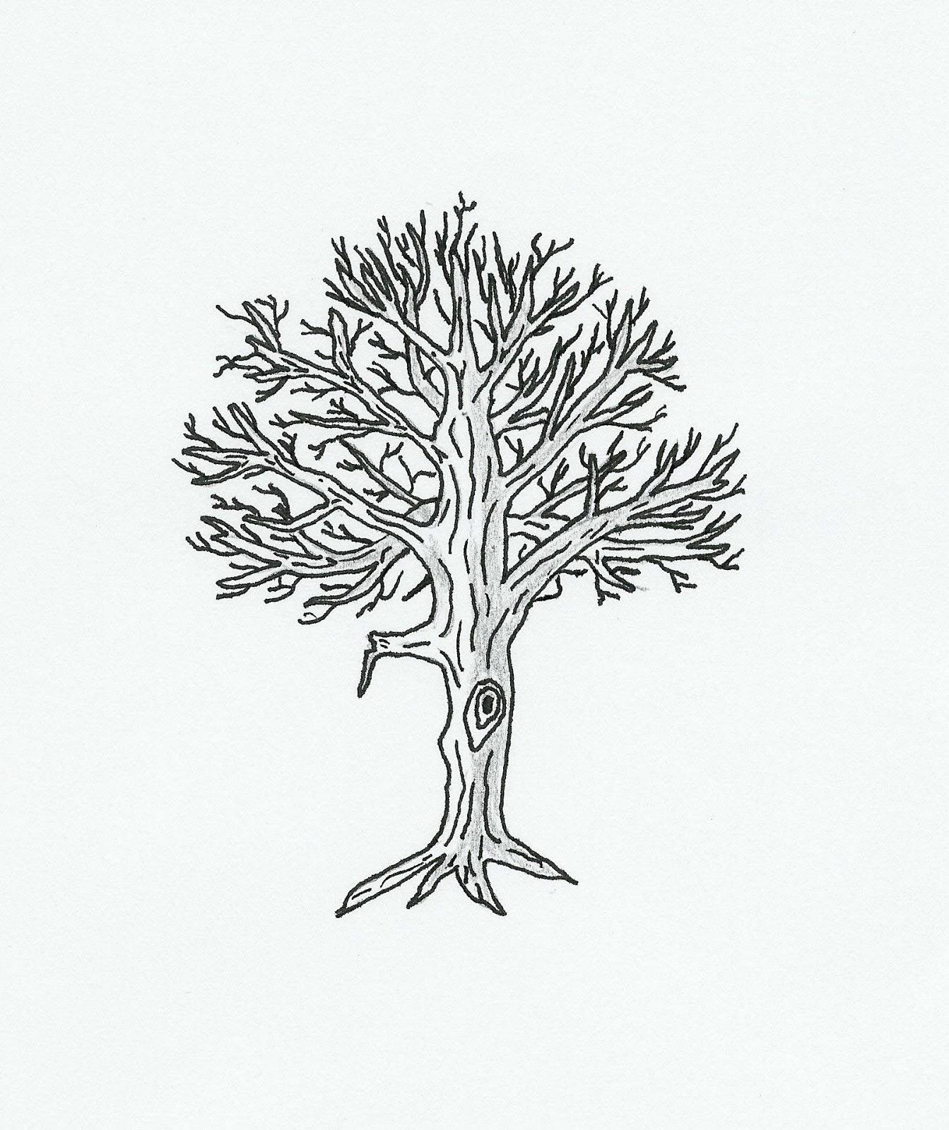 Tree Diagrams Worksheet Juanribon – Math Tree Diagram Worksheet