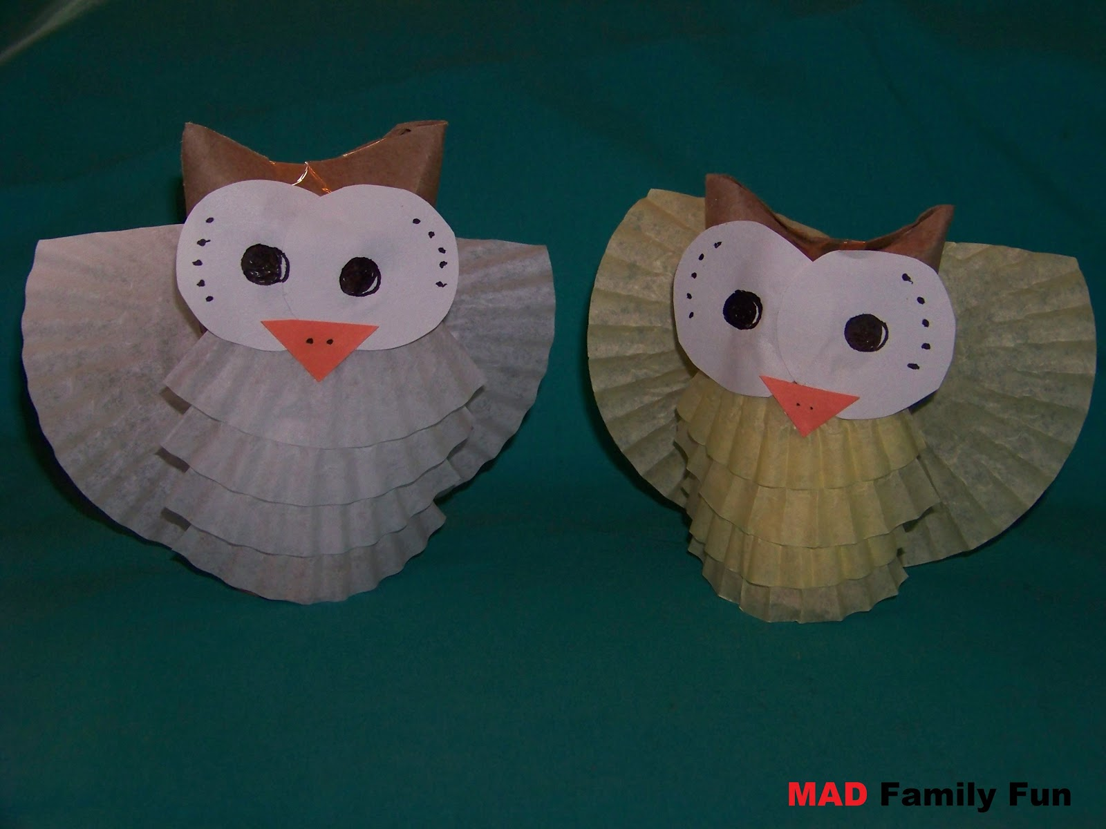Mad family fun toilet paper tube owls for Toilet paper tube owls