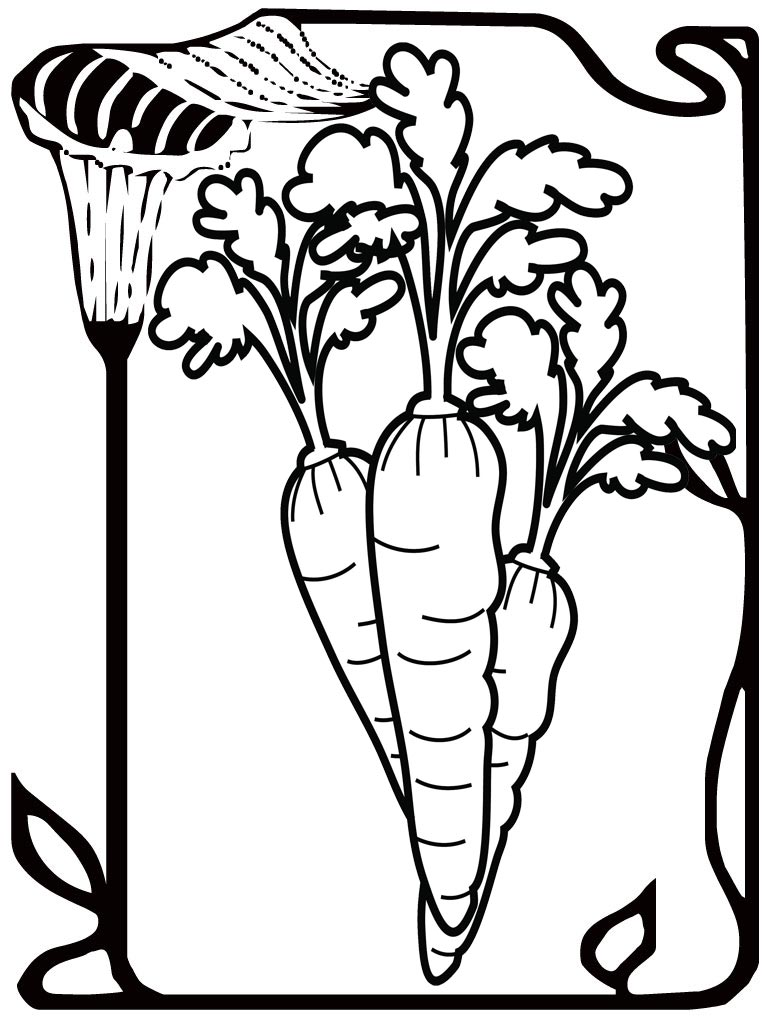 seed coloring pages - photo#40