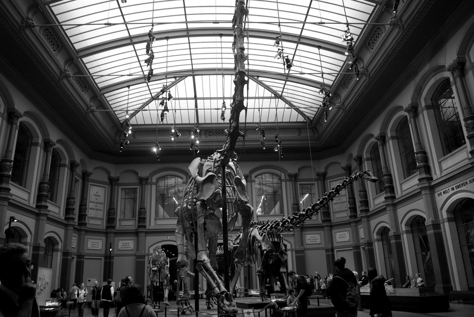 Muzeum Historii Naturalnej Berlin Naturkunde Museum