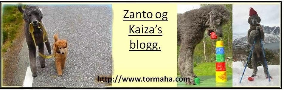 Zantos og Kaizas  blogg