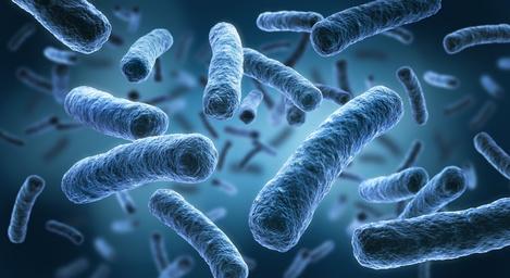 Bakterienfreies Wasser in Dentaleinheiten